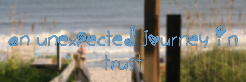 An Unexpected Journey in Trust